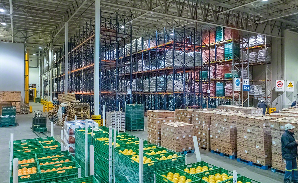 fresh fruit warehouse of coto in argentina
