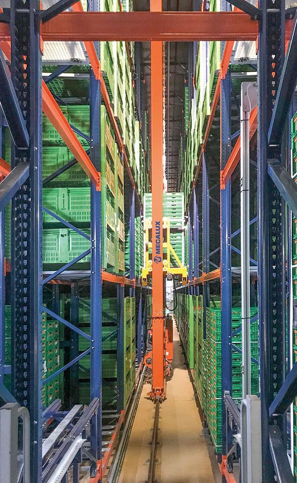 Kiwi Greensun's new, automated warehouse in Salvador de Briteiros, Portugal
