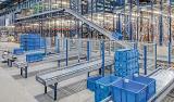 Box Conveyor Systems